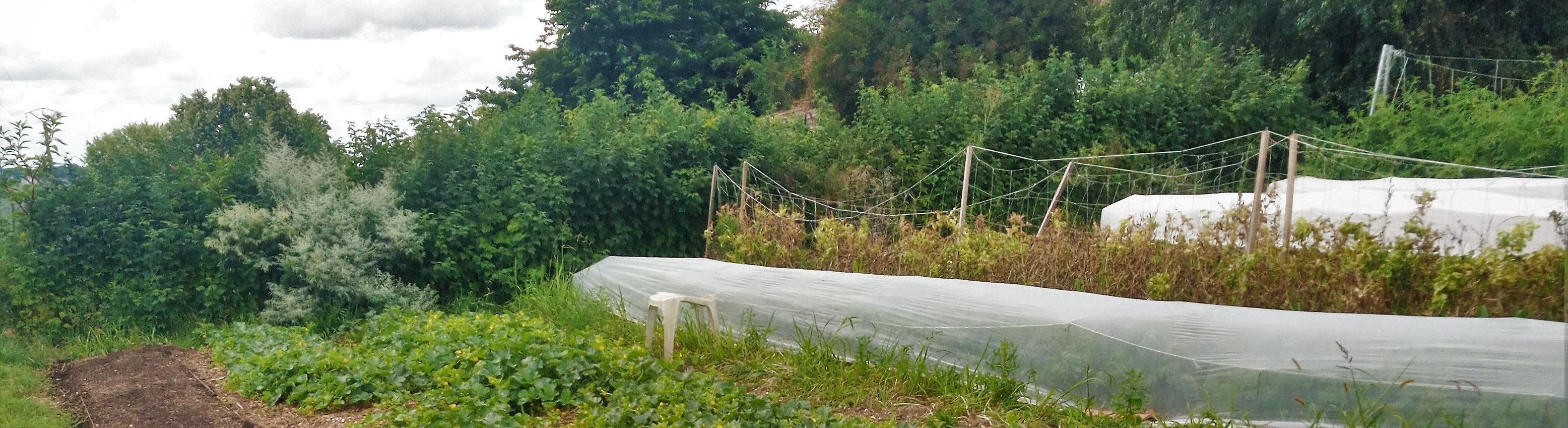 visite des jardins de bouet avec bordeaux mtropole et la chambre d agriculture de gironde